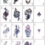 birdcards-1