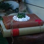 growingbooks-9