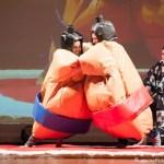 sumo wrestling 002