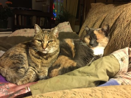 Flo and Minnie