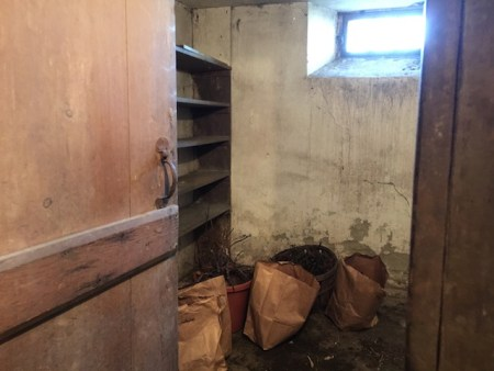 Our root cellar