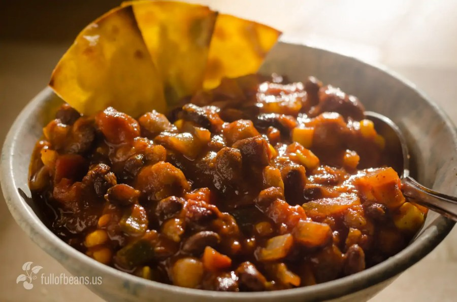 The Best Vegetarian Bean Chili Recipe — Dishmaps