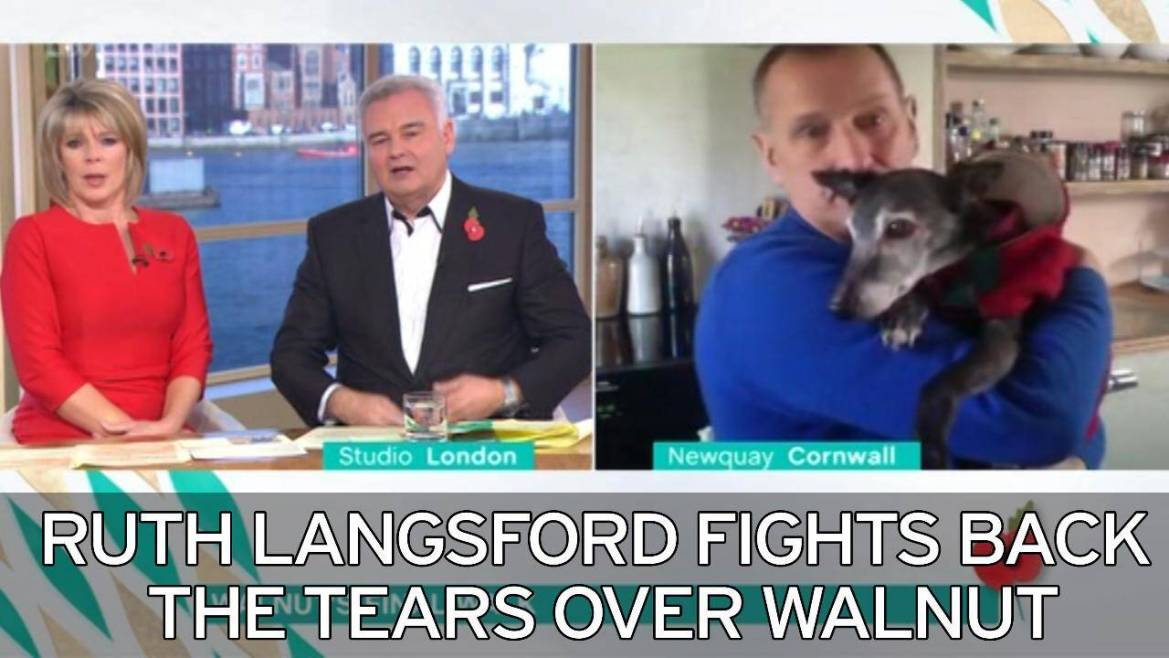 Video thumbnail, Ruth Langsford is close to tears as she interviews Walnut's owner before his last walk