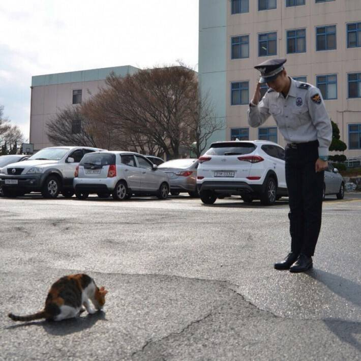 Molang is a homeless cat who started to hang out with the officers while on duty.