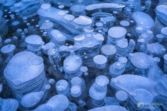 Incredible-ice-bubbles-in-Lake-Abraham-006