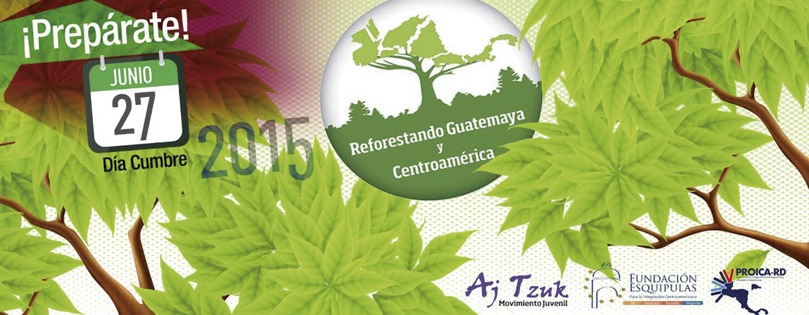 ¿Estás preparado para reforestar?