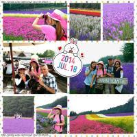 flower_20141203