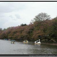 japan_0113_16