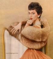 1954 photo of Dovima