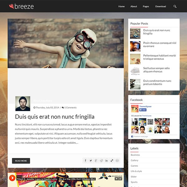 Breeze Responsive Personal Blogger Template
