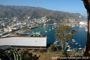 Avalon harbor from above