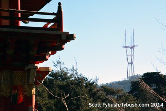 Sutro, from the Japanese Tea Garden