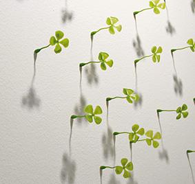 Lucky_wall__1.jpg