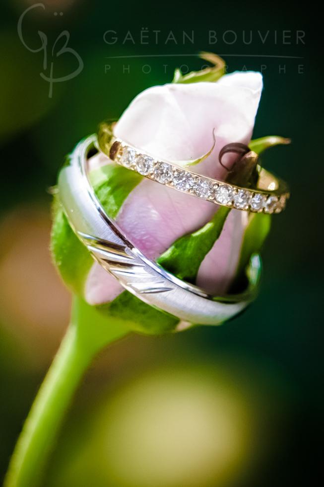 Photos de bagues des mariés sur une rose