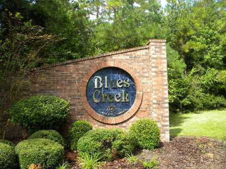 Blues Creek Community in Gainesville FL