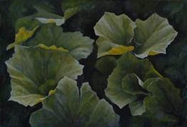 282. Groothoefblad 15 (34 x 50 cm)
