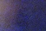 DSC02567