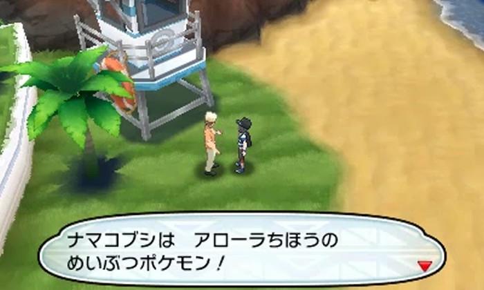 namakobusi-nage-baito-pokemon-sm-10