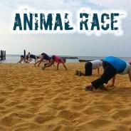 Animal Race