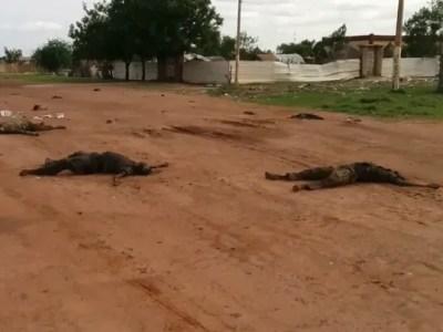 U.N. expresses 'horror' at South Sudan massacre