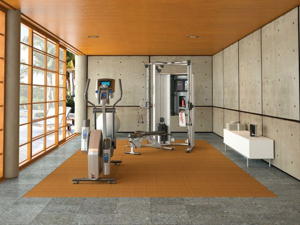 Garage gyms inspirations ideas gallery pg 4 garage gyms for Garage feng shui