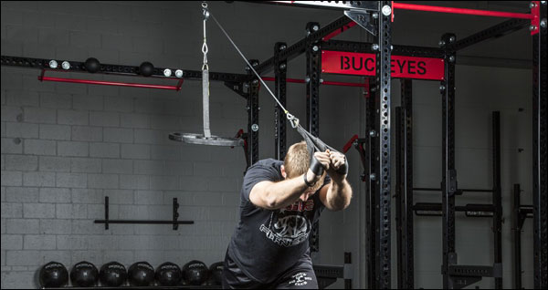 Lat & Tri pulley system by Spud Inc.