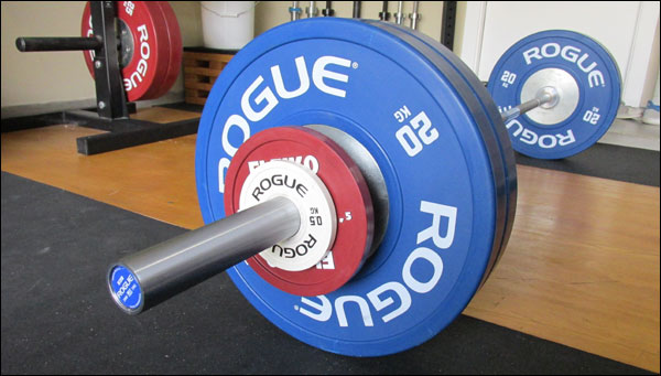 Rogue Euro Barbell Review