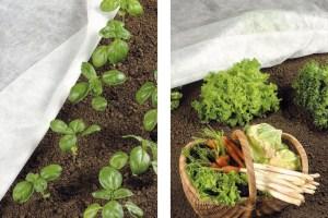 Come si Cura L'Orto - Come fare per avere un orto perfetto anche in Balcone