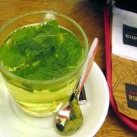 Health Benefits of Mint Tea