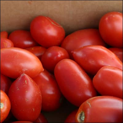Preserving Roma Tomatoes: Canning and Freezing