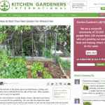 7 Great Garden Bloggers You Should Subscribe To