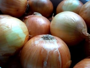 When and How to Harvest Onions