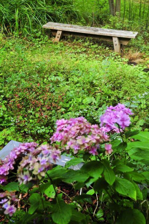 021_Garden_Art_web