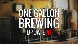 One Gallon Brewing - CItra Smash Update 1