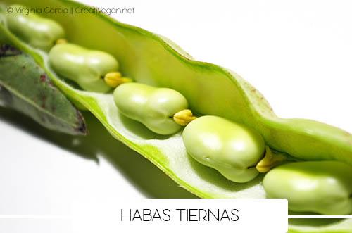 Habas tiernas (fava beans)