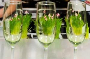 slc pop sparkling wine edible garden