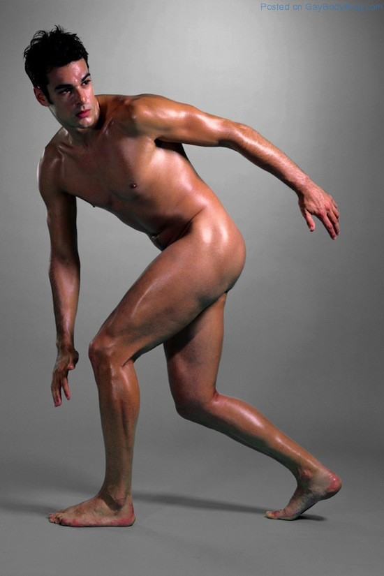The Artistic Male Nude 1 The Artistic Male Nude