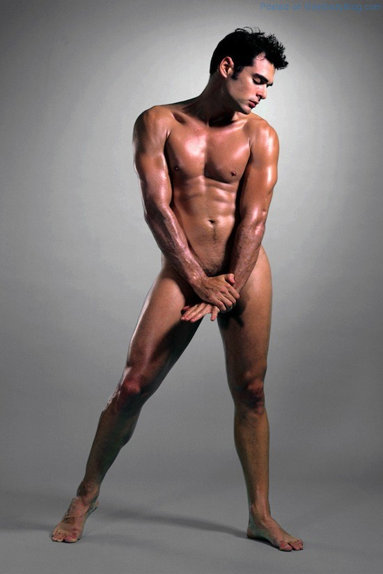 The Artistic Male Nude 4 The Artistic Male Nude