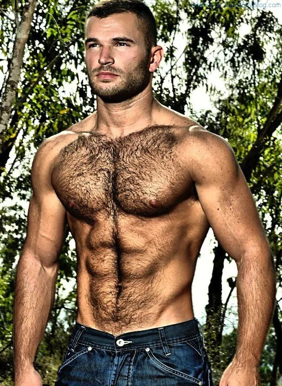 Anissa sexy hairy hunks naked video gay