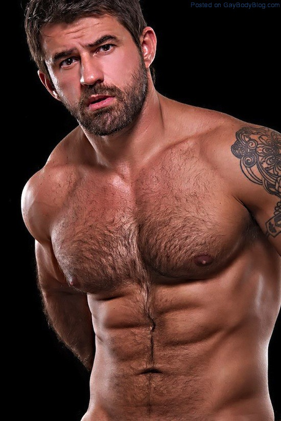 Masculine And Hairy Hunk Fabricio Ternes 3 Masculine And Hairy Hunk Fabricio Ternes
