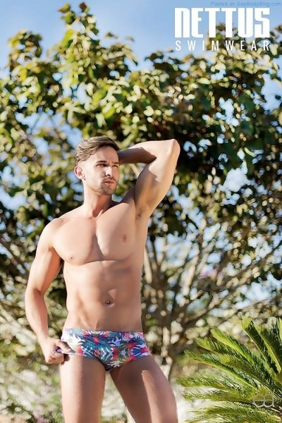 A Nice Collection Of Hunks For Nettus Swimwear 1
