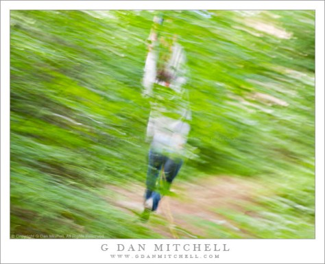 Zip Line - A person flies through forest trees on a zip line.