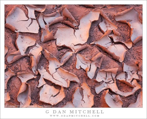 Dry Mud and Sand