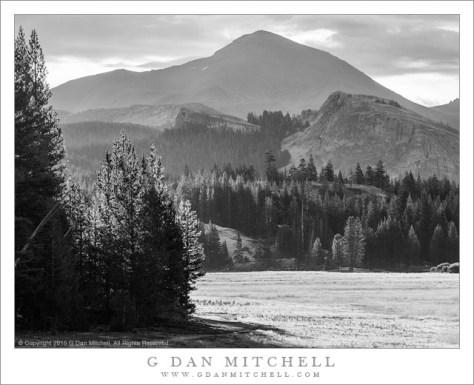 Morning, Tuolumne Meadows, Mount Dana