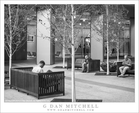 Three Men, Urban Garden