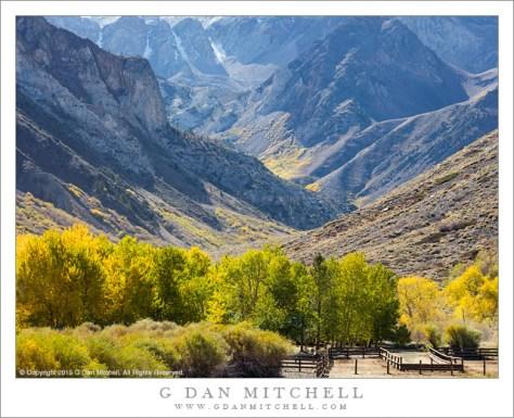Eastern Sierra Pack Station, Fall Colors