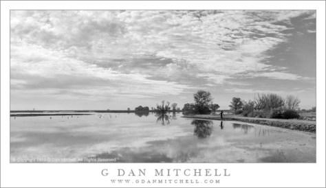 Photographer, Wetlands