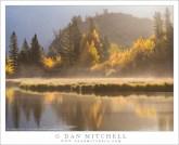 Shoreline Mist, Autumn