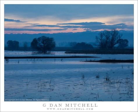 Before Dawn, Wetlands