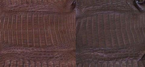 Brown croc